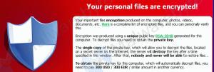Cresce l'allarme per il ransomware